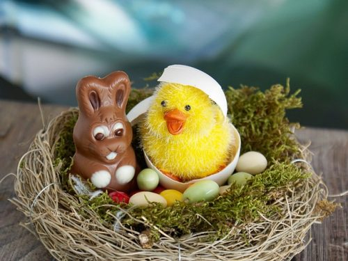 Birds Nest with Easter Surprises