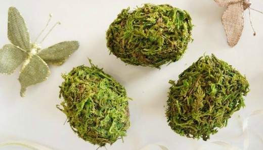 Moss Covered Eggs