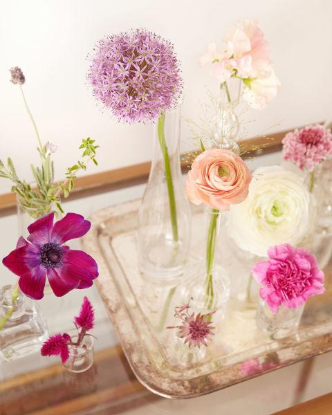 Spring Flowers in Bud Vases